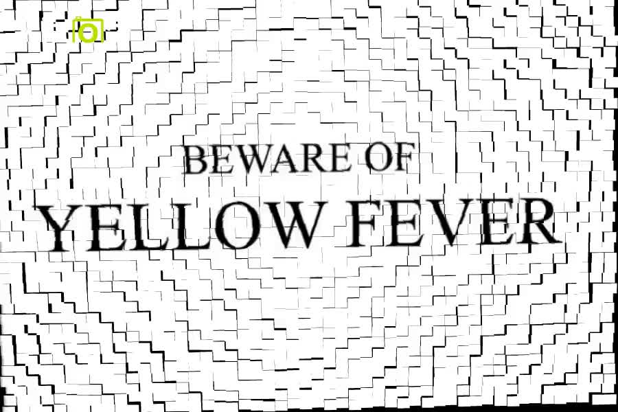Yellow Fever Awareness and Preventative Measures by Gloria Mensah