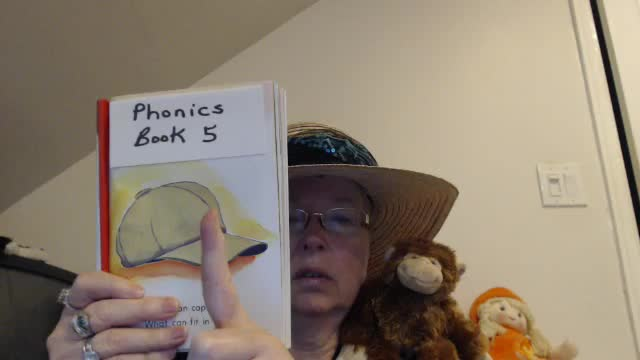 Story 5 Lesson 1: Learning to Read with Phonics