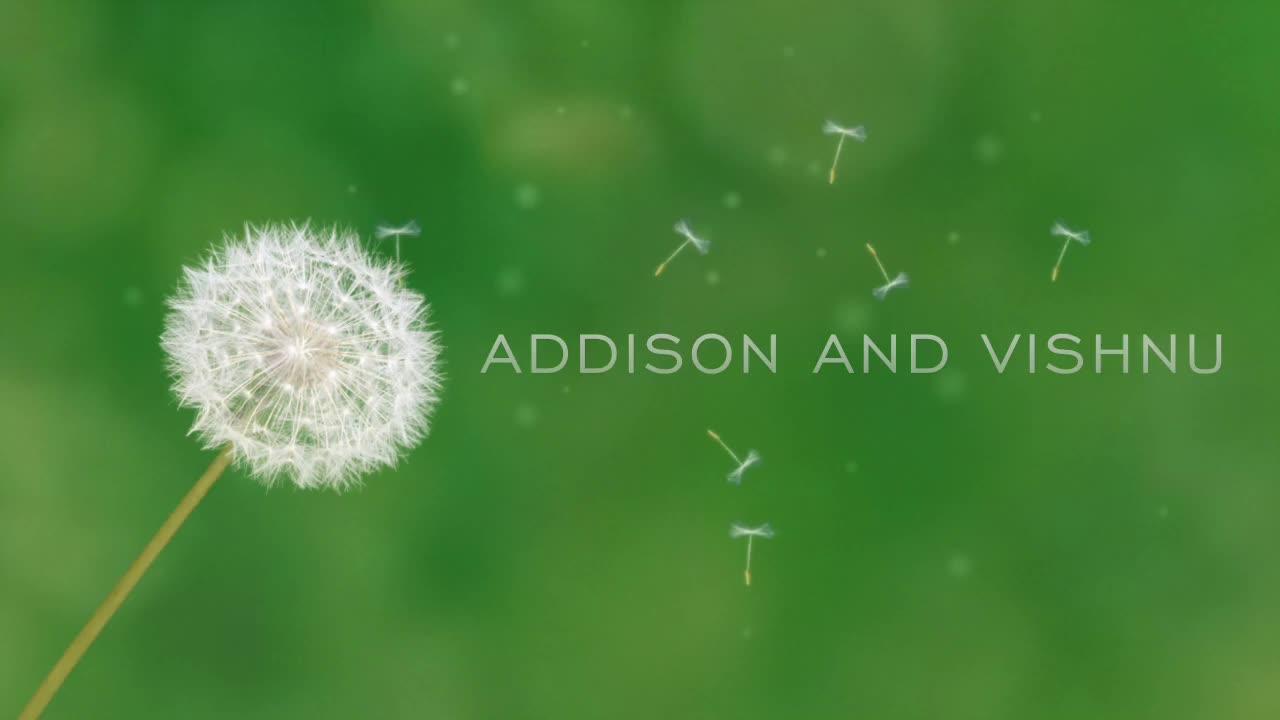 Energy Addison and Vishnu