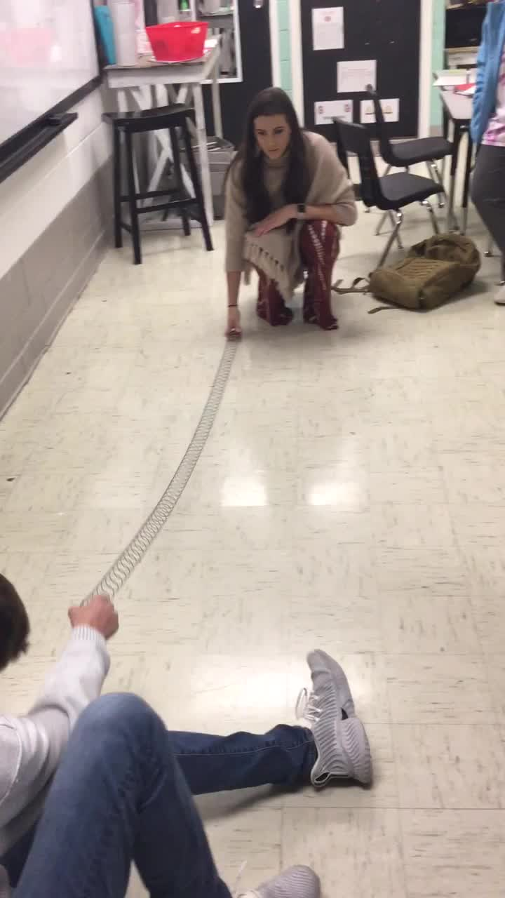 Wave Demo Using a Slinky