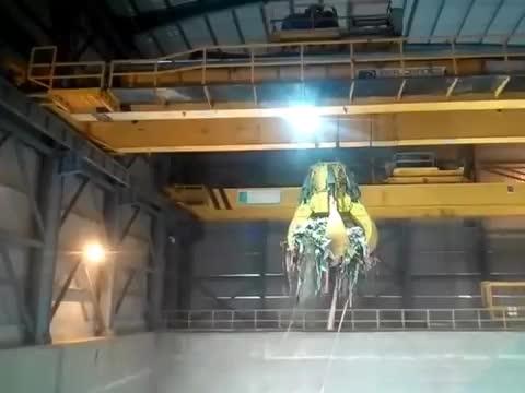Waste To Energy Crane