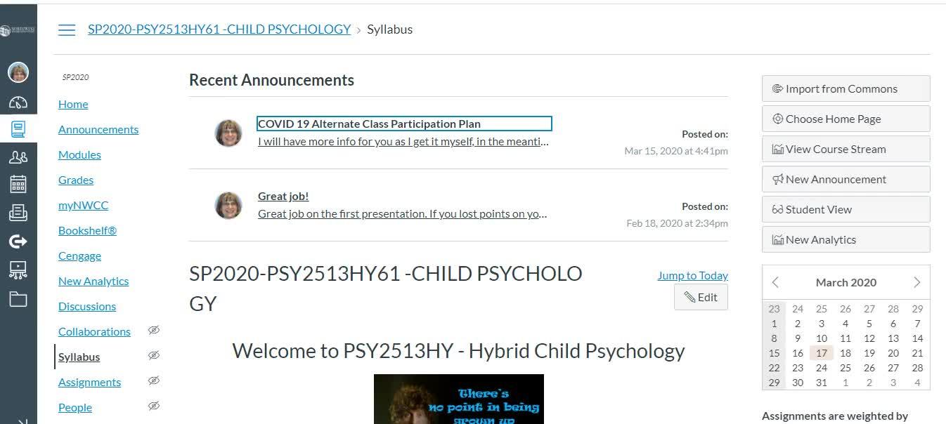Child Psychology SP2020 COVID 19 #1
