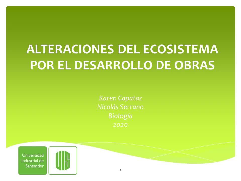 Alteraciones del ecosistema por el desarrollo de obras
