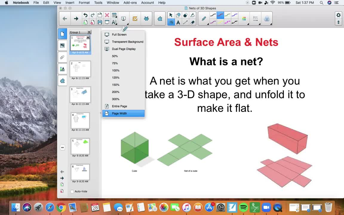 Surface Area/Nets