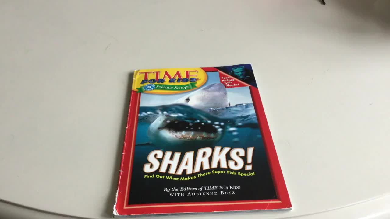 Times for Kids: Sharks