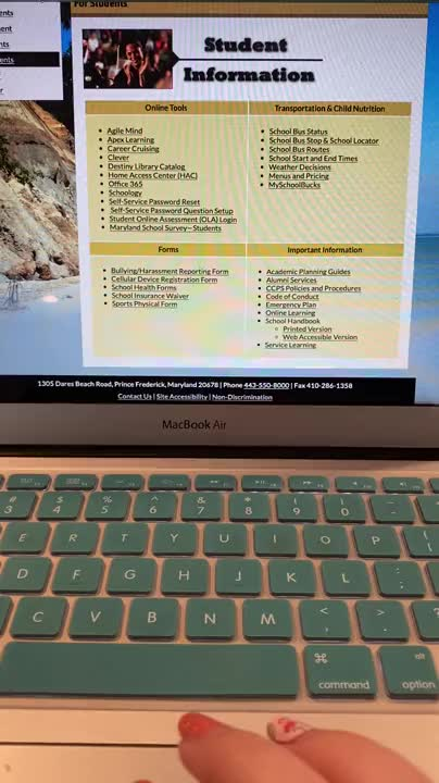 Daily Routine for Online Distance Learning
