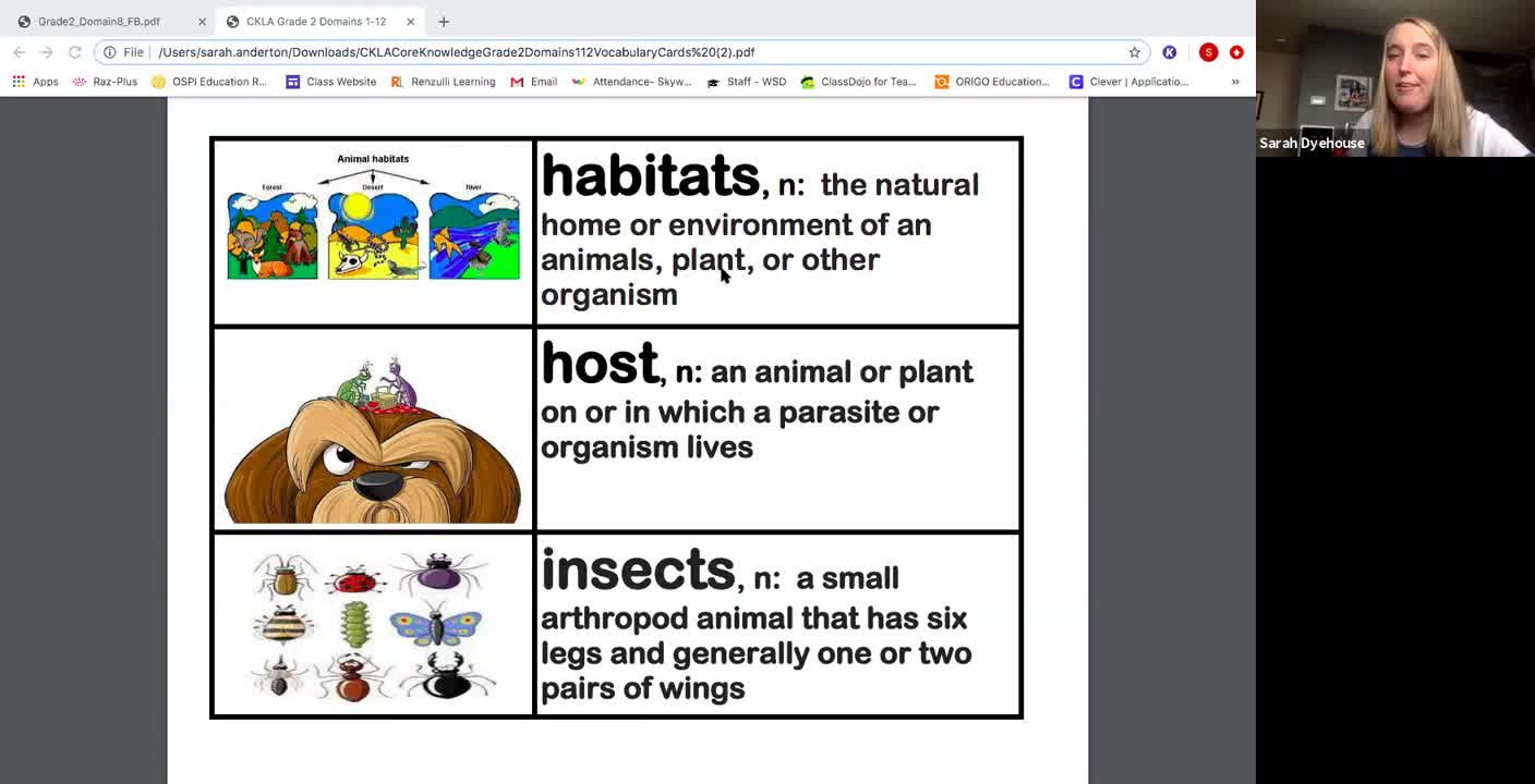 """""""Insects Everywhere"""""""