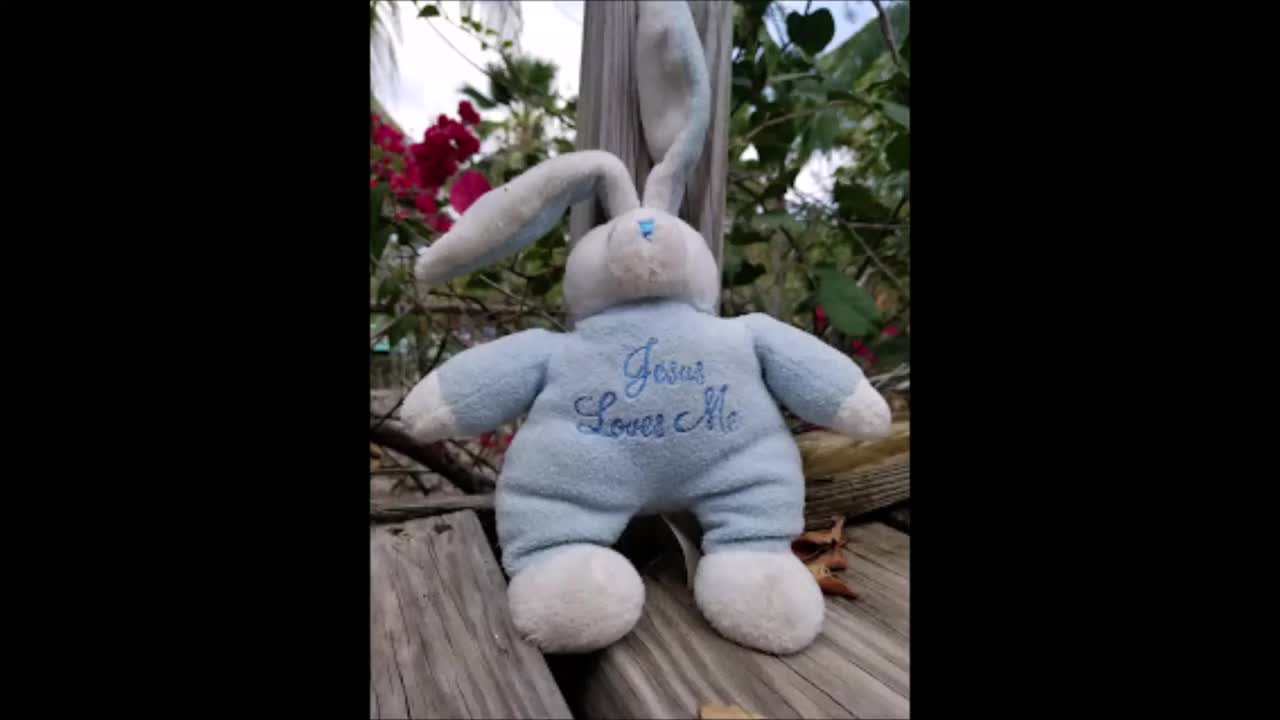 Easter Bunny Stop Motion