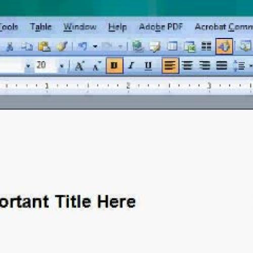 Creating and Editing a Word 2003 Macro