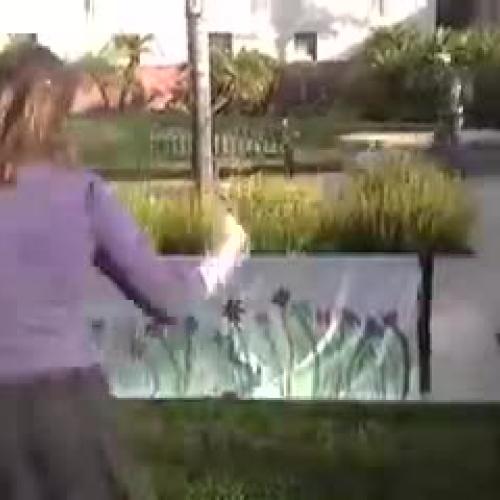 Metamorphosis iMovie