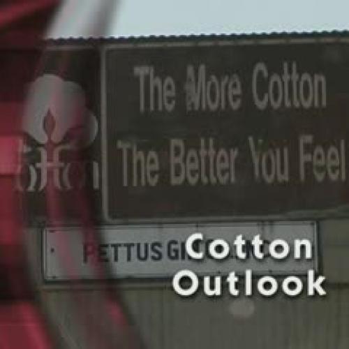 Arkansas Farm Bureau - Cotton Outlook