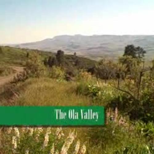 Ola School Biodiversity