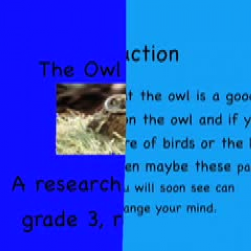 The Owl Search by Clark
