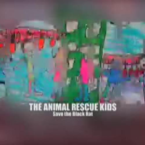 The Animal Rescue Kids Save the Black Rat