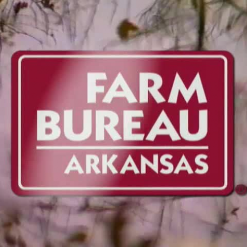 Agriculture - The Landscape of Arkansas