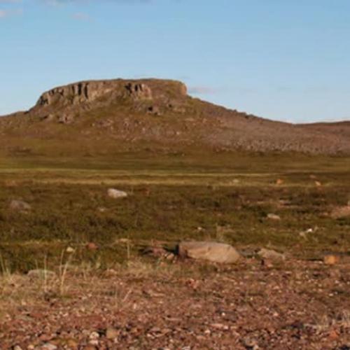 Arctic Tundra Photostory