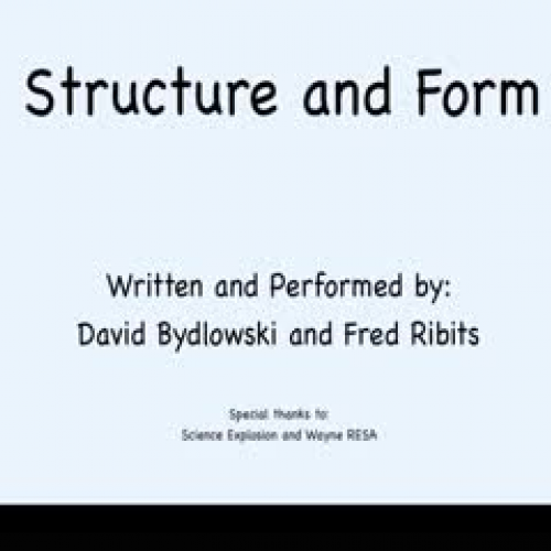 Structure and Form Song