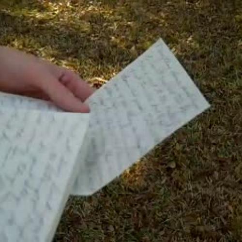 Handwriting Analysis by Mark