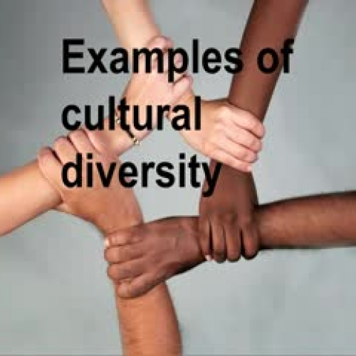 Cultural Diversity Song