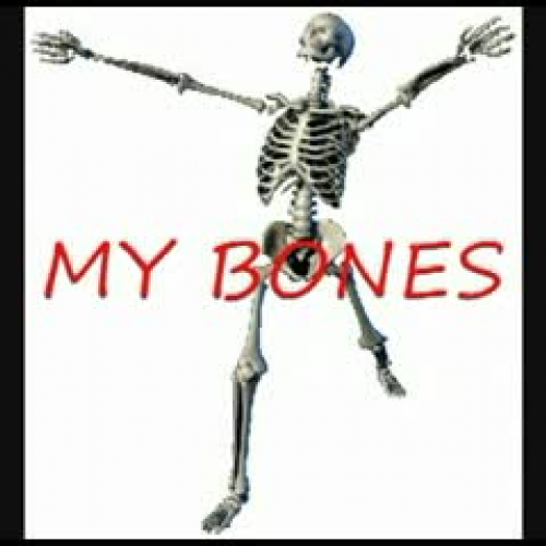 The Skeletal System Video - Songs of Higher Learning