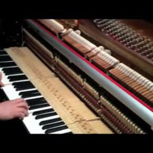 piano hammers