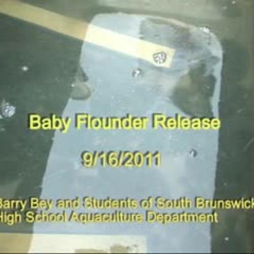 Raising Flounder