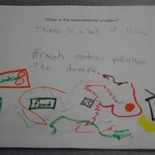 Environmental Issue 3