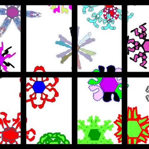 Snowflake Symmetry on the Computer
