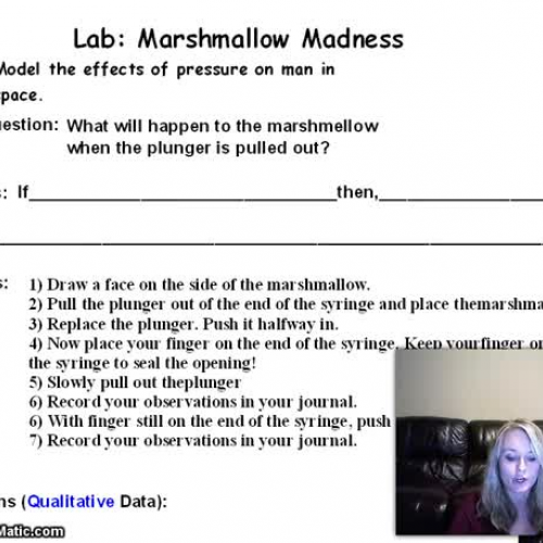 Marshmallow Madness Lab Video