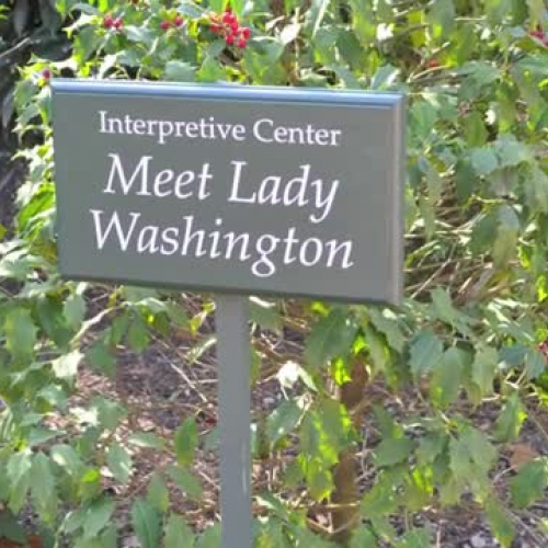 Meet Martha Washington