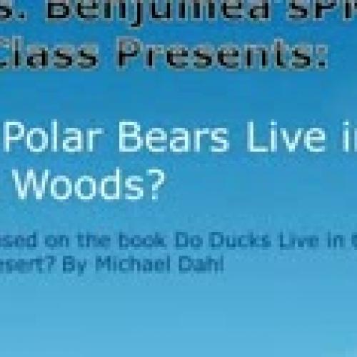 polar_bears_woods