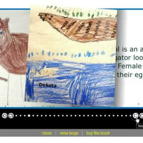 Kindergarten Research Story Jumper Screencast