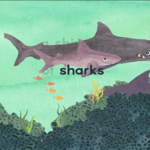 A SHIVER OF SHARKS Book Trailer