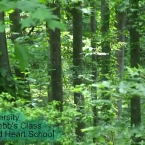Biodiversity - Music Video by 5th Graders