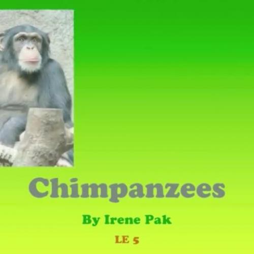 ELE5 - IrenePak - ChimpanzeeResearchPresentat