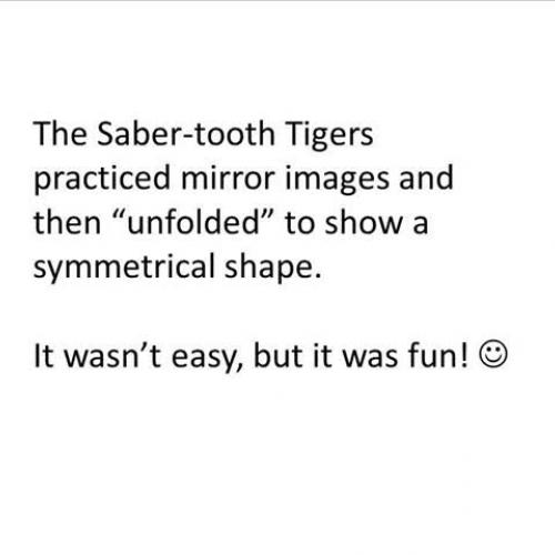 Mirror Play Symmetry Practice