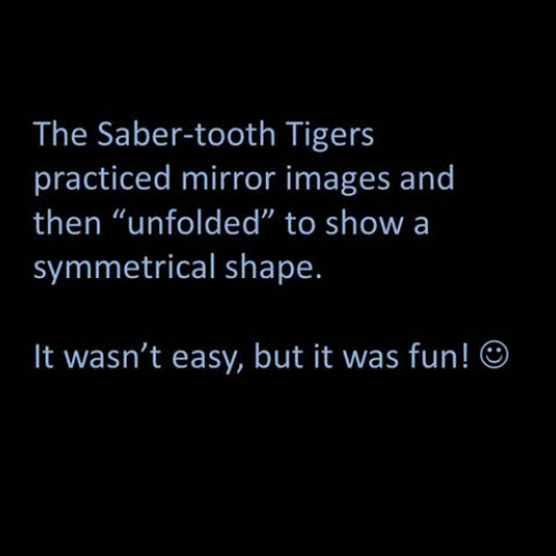 Mirror Play Symmetry 2