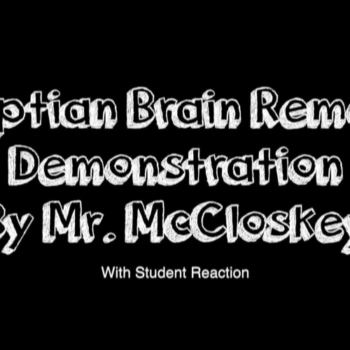 How did the Egyptians Remove the Brain Reaction Video