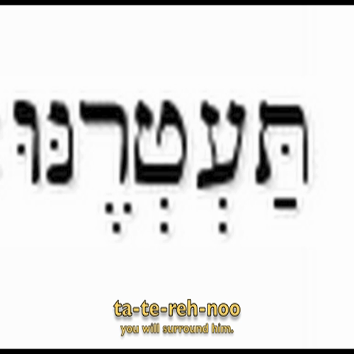 Hebrew Language Psalm 5-12
