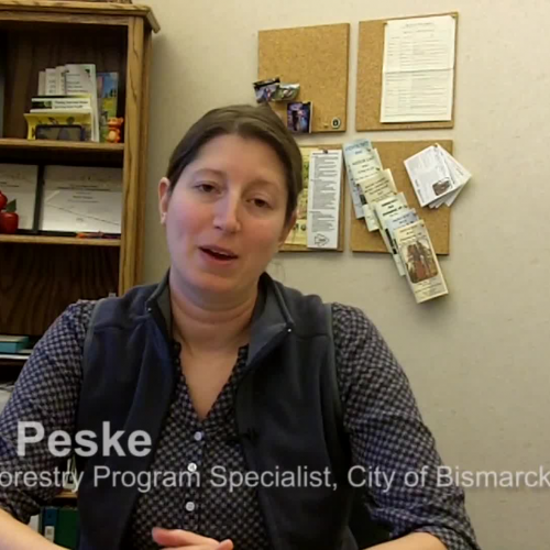 Urban Forestry Program Specialist - Career Conversations