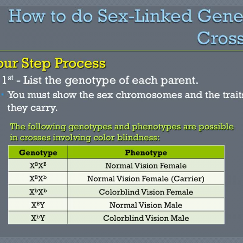 Genetics II: Sex-Linked Crosses