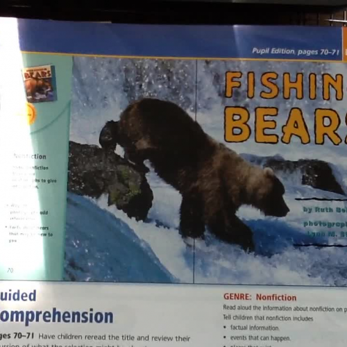 Trophies Reading Story: Fishing Bears