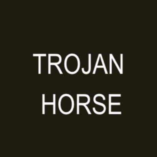 Trojan Horse II-Montfort Academy