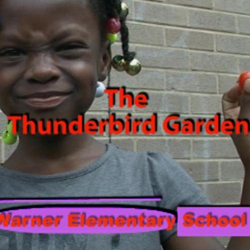 Warner Elementary School - Thunderbird Garden