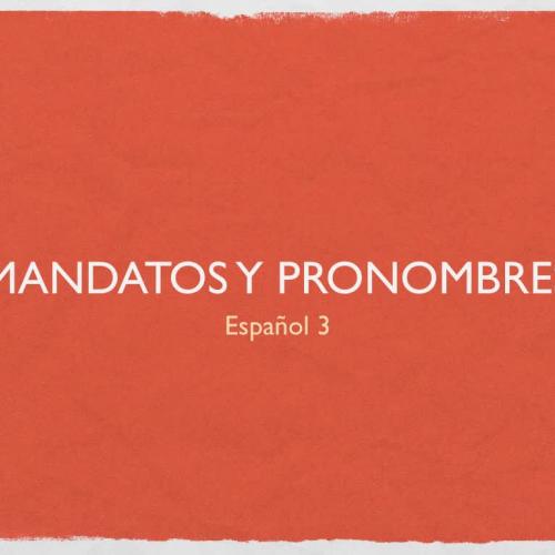 Command w/ Pronoun Notes