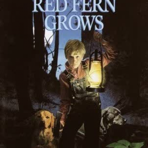 Where the Red Fern Grows Chp 3