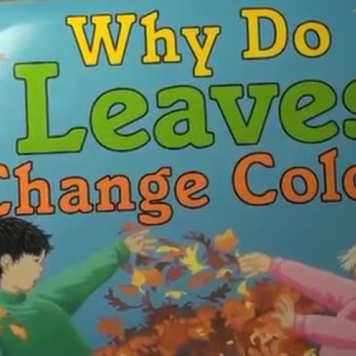 Why Do Leaves Change Color By: Betsy Maestro