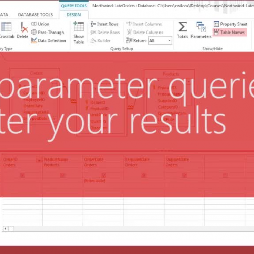 Use parameter queries to filter your results