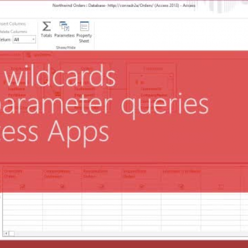 Use logical operators and wildcards in an Access App