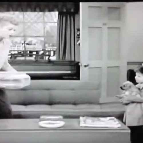 1950s TV Show